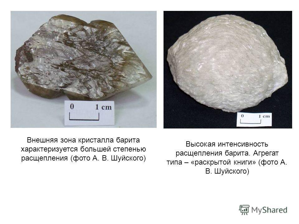 Внешняя зона кристалла барита характеризуется большей степенью расщепления (фото А. В. Шуйского) Высокая интенсивность расщепления барита. Агрегат типа – «раскрытой книги» (фото А. В. Шуйского)