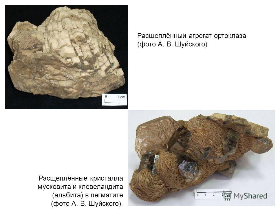 Расщеплённые кристалла мусковита и клевеландита (альбита) в пегматите (фото А. В. Шуйского). Расщеплённый агрегат ортоклаза (фото А. В. Шуйского)
