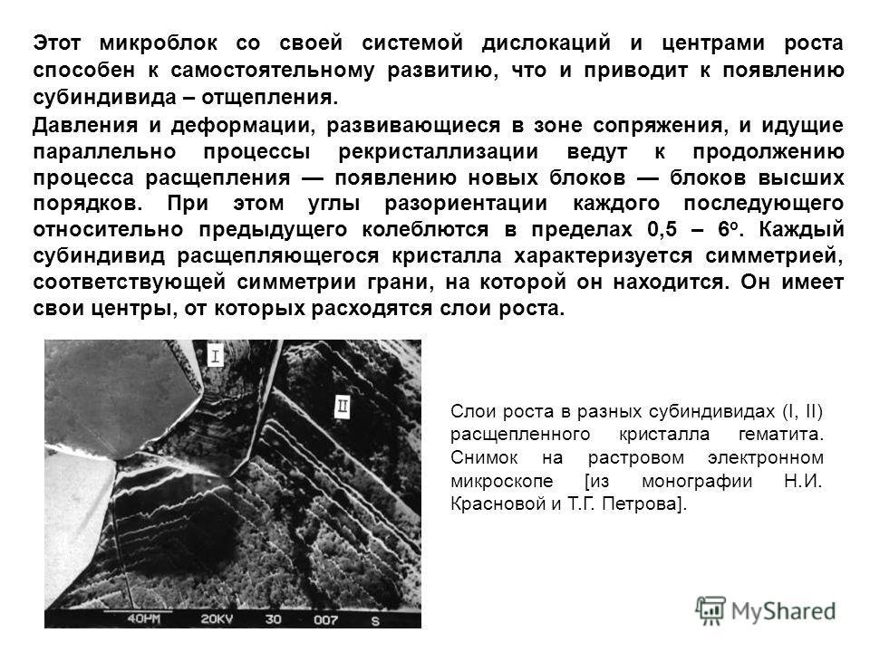 Слои роста в разных субиндивидах (I, II) расщепленного кристалла гематита. Снимок на растровом электронном микроскопе [из монографии Н.И. Красновой и Т.Г. Петрова]. Этот микроблок со своей системой дислокаций и центрами роста способен к самостоятельн