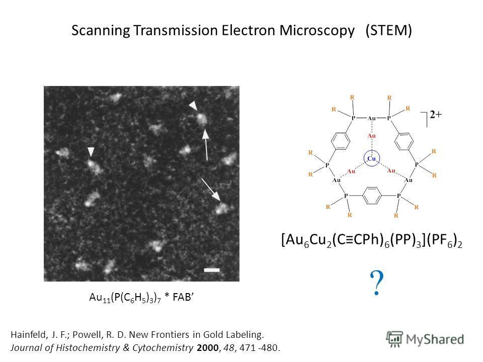 Au 11 (P(C 6 H 5 ) 3 ) 7 * FAB Scanning Transmission Electron Microscopy (STEM) [Au 6 Cu 2 (CCPh) 6 (PP) 3 ](PF 6 ) 2 ? Hainfeld, J. F.; Powell, R. D. New Frontiers in Gold Labeling. Journal of Histochemistry & Cytochemistry 2000, 48, 471 -480.