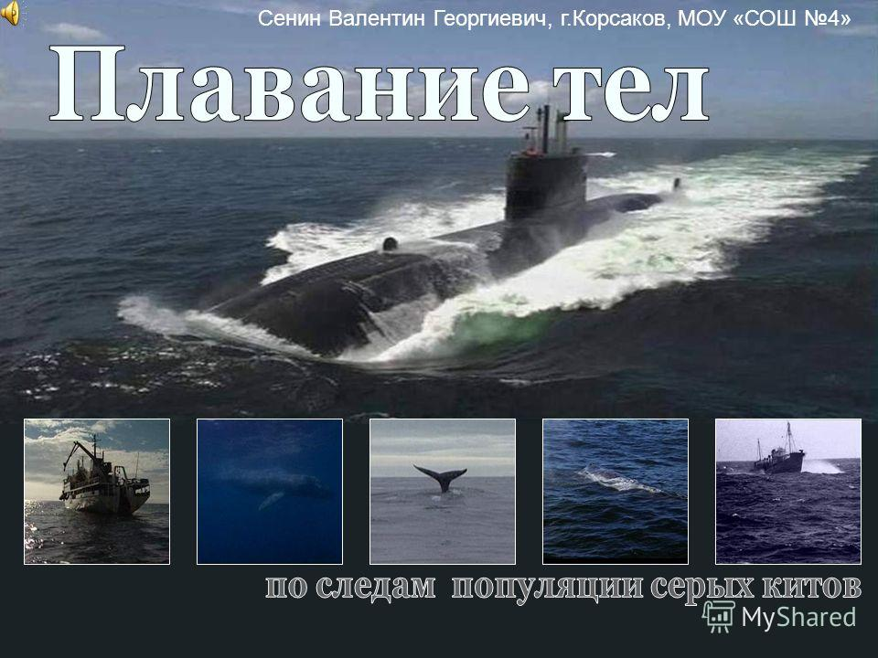 Сенин Валентин Георгиевич, г.Корсаков, МОУ «СОШ 4»