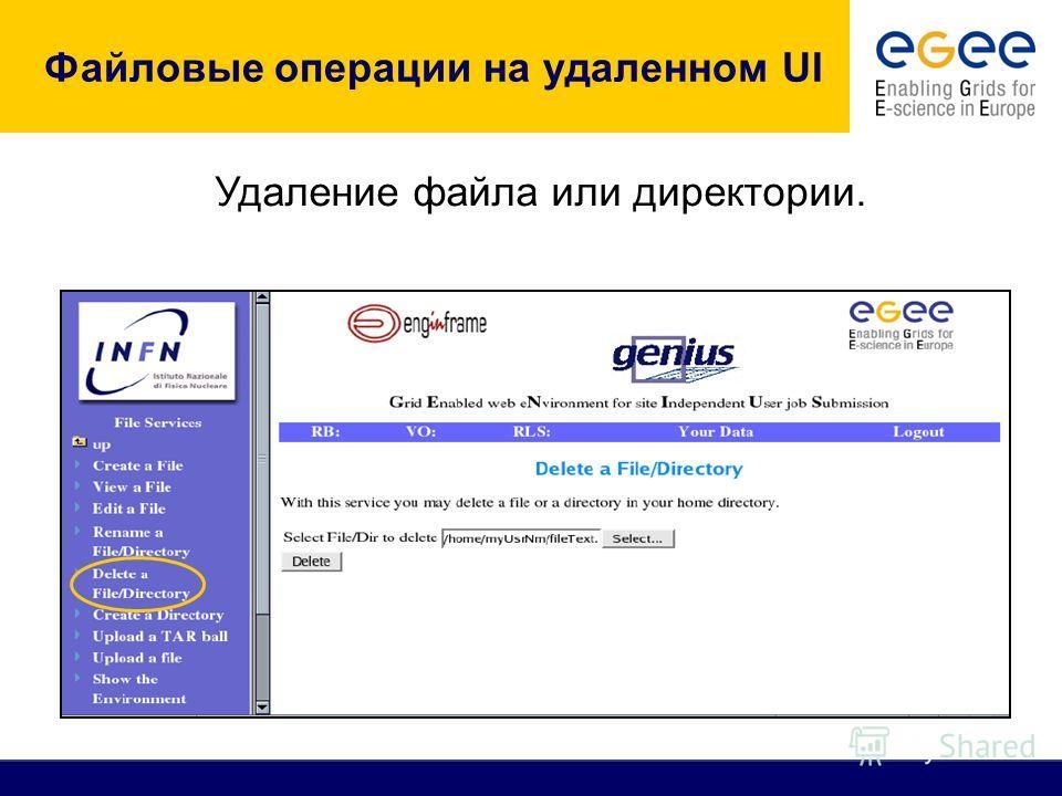 Файловые операции на удаленном UI Удаление файла или директории.