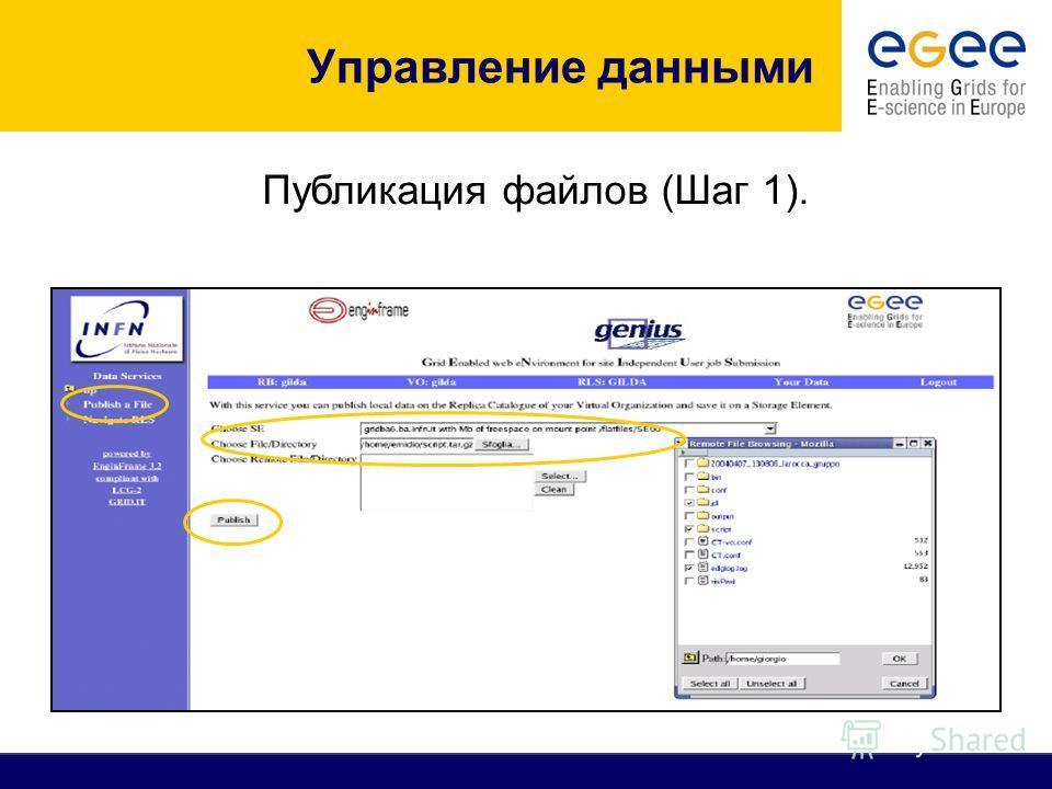 Управление данными Публикация файлов (Шаг 1).