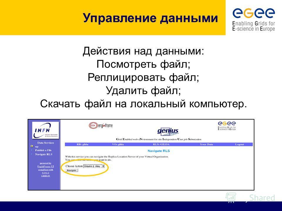 Действия над данными: Посмотреть файл; Реплицировать файл; Удалить файл; Скачать файл на локальный компьютер.