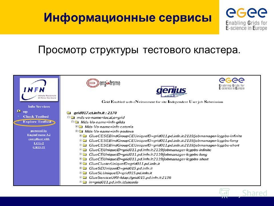 Просмотр структуры тестового кластера. Информационные сервисы