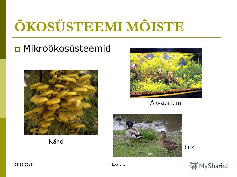 08.12.2013Loeng 113 ÖKOSÜSTEEMI MÕISTE Mikroökosüsteemid Känd Akvaarium Tiik