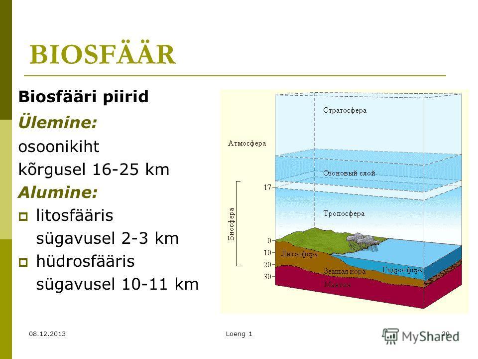 08.12.2013Loeng 120 BIOSFÄÄR Biosfääri piirid Ülemine: osoonikiht kõrgusel 16-25 km Alumine: litosfääris sügavusel 2-3 km hüdrosfääris sügavusel 10-11 km
