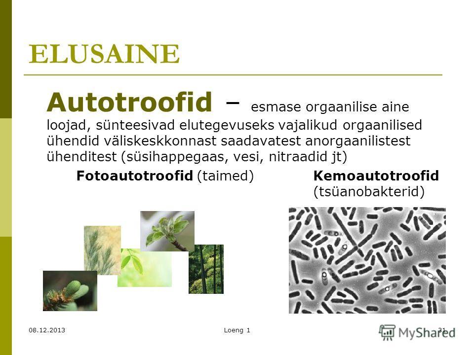 08.12.2013Loeng 131 ELUSAINE Autotroofid – esmase orgaanilise aine loojad, sünteesivad elutegevuseks vajalikud orgaanilised ühendid väliskeskkonnast saadavatest anorgaanilistest ühenditest (süsihappegaas, vesi, nitraadid jt) Fotoautotroofid (taimed)K