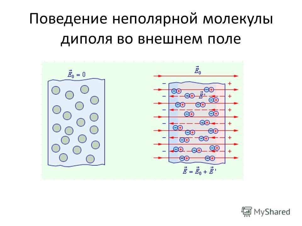 Поведение неполярной молекулы диполя во внешнем поле
