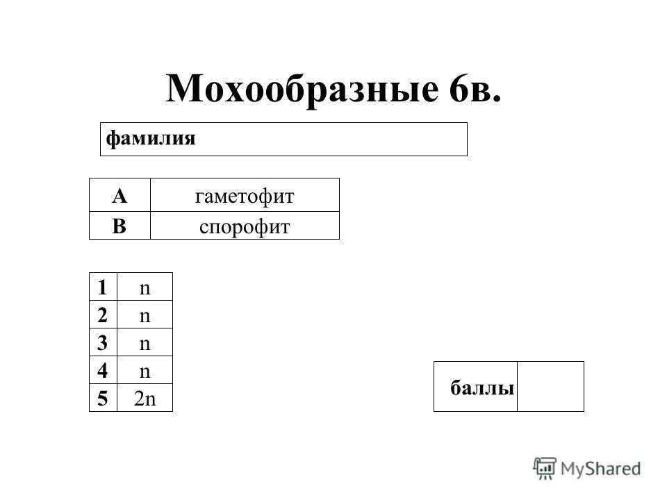 Мохообразные 6в. А В гаметофит спорофит 1n 2n 3n 4n 52n баллы фамилия