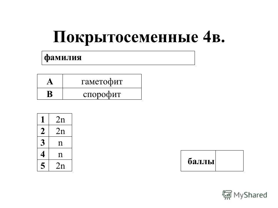 Покрытосеменные 4в. А В гаметофит спорофит 12n 2 3n 4n 5 баллы фамилия