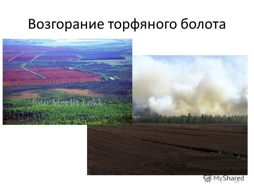 Возгорание торфяного болота 23
