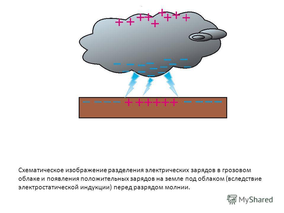 . Схематическое изображение разделения электрических зарядов в грозовом облаке и появления положительных зарядов на земле под облаком (вследствие электростатической индукции) перед разрядом молнии.