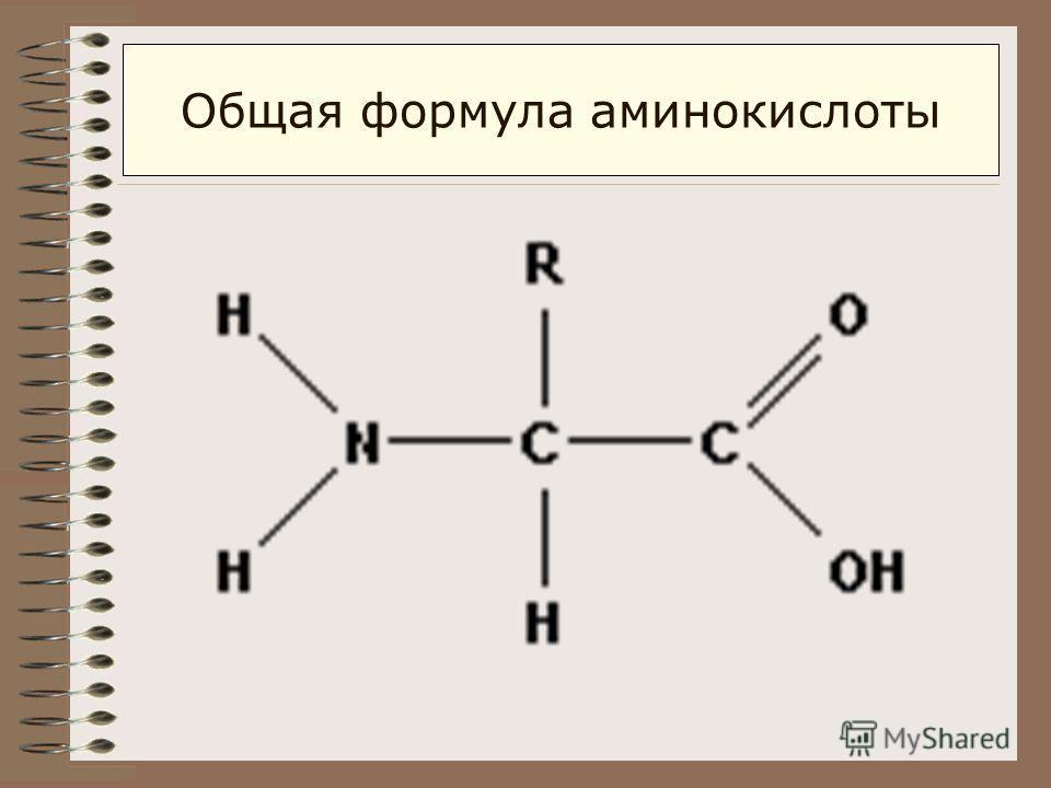 Общая формула аминокислоты