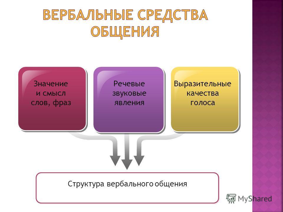 Значение и смысл слов, фраз Речевые звуковые явления Выразительные качества голоса Структура вербального общения