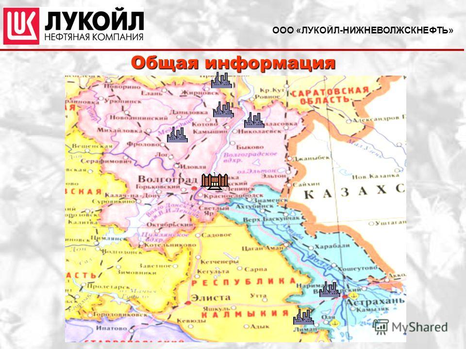 Общая информация ООО «ЛУКОЙЛ-НИЖНЕВОЛЖСКНЕФТЬ»