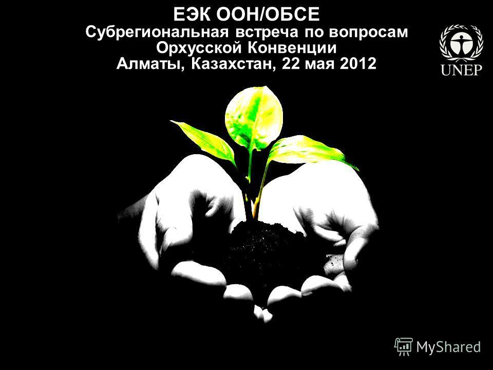 ЕЭК ООН/ОБСЕ Субрегиональная встреча по вопросам Орхусской Конвенции Алматы, Казахстан, 22 мая 2012