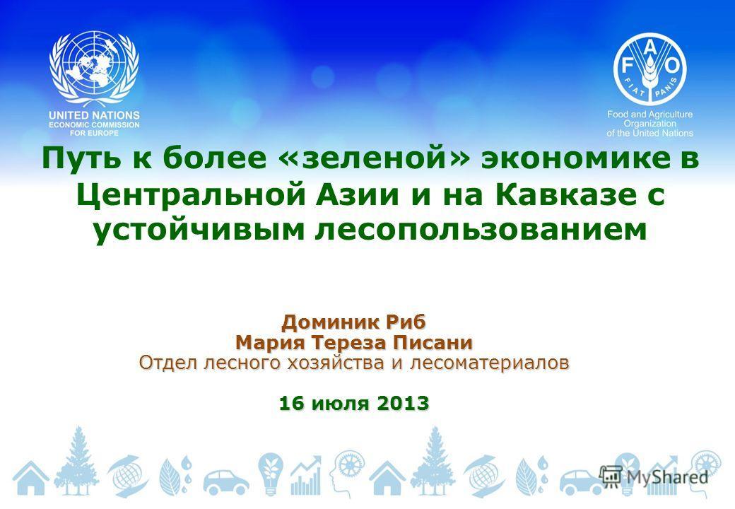 Путь к более «зеленой» экономике в Центральной Азии и на Кавказе с устойчивым лесопользованием Доминик Риб Мария Тереза Писани Отдел лесного хозяйства и лесоматериалов 16 июля 2013
