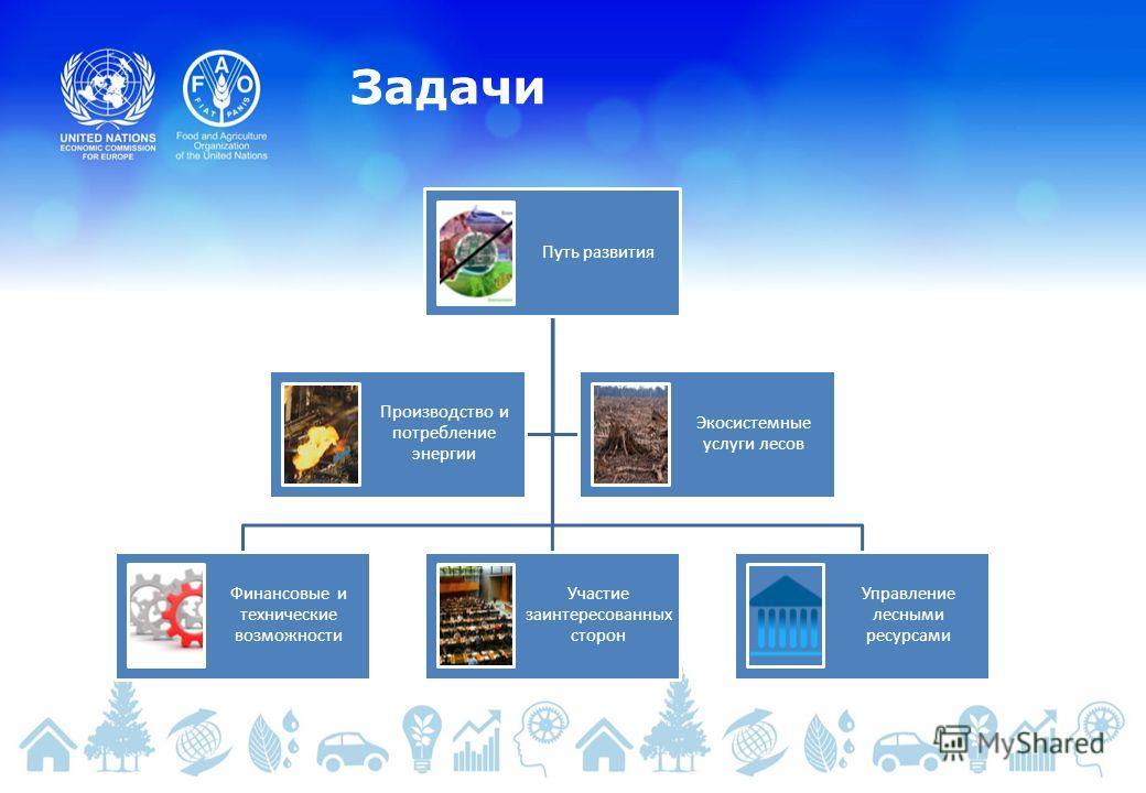 Задачи Путь развития Финансовые и технические возможности Участие заинтересованных сторон Управление лесными ресурсами Производство и потребление энергии Экосистемные услуги лесов