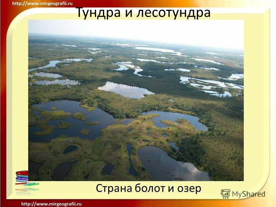 Тундра и лесотундра Страна болот и озер