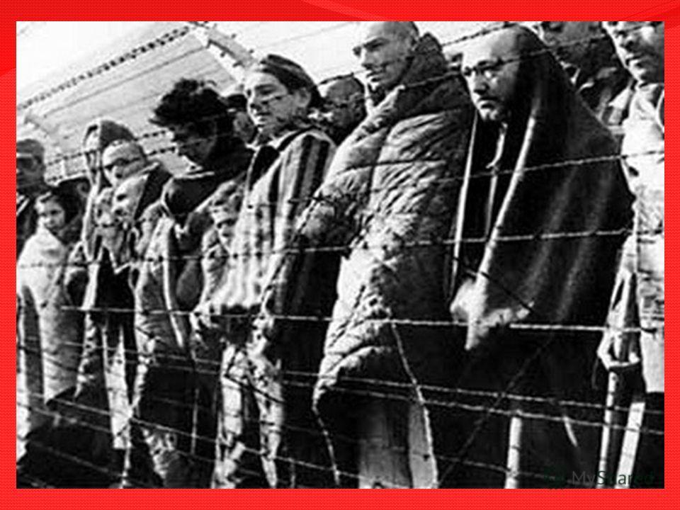 Узникам фашистских лагерей посвящается