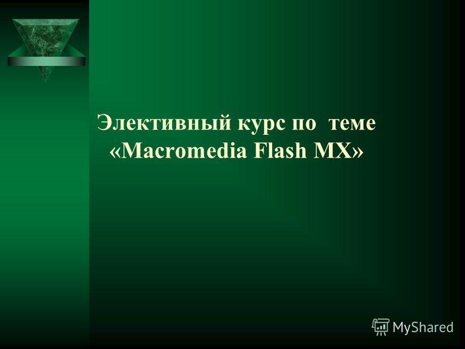 Элективный курс по теме «Macromedia Flash MX»