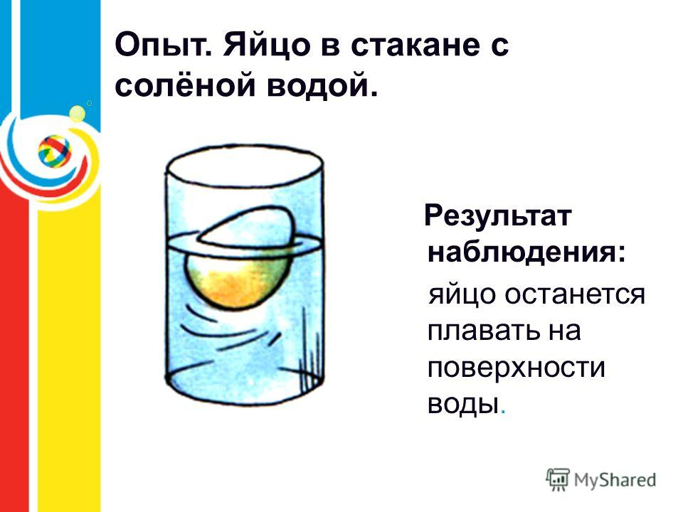 Опыт. Яйцо в стакане с солёной водой. Результат наблюдения: яйцо останется плавать на поверхности воды.