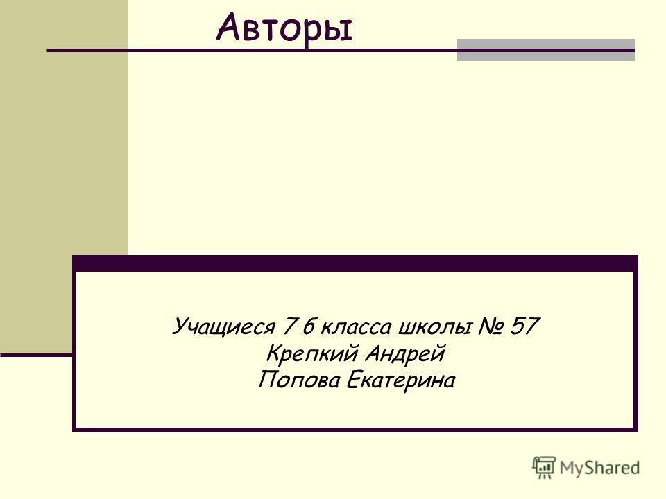 Авторы Учащиеся 7 б класса школы 57 Крепкий Андрей Попова Екатерина