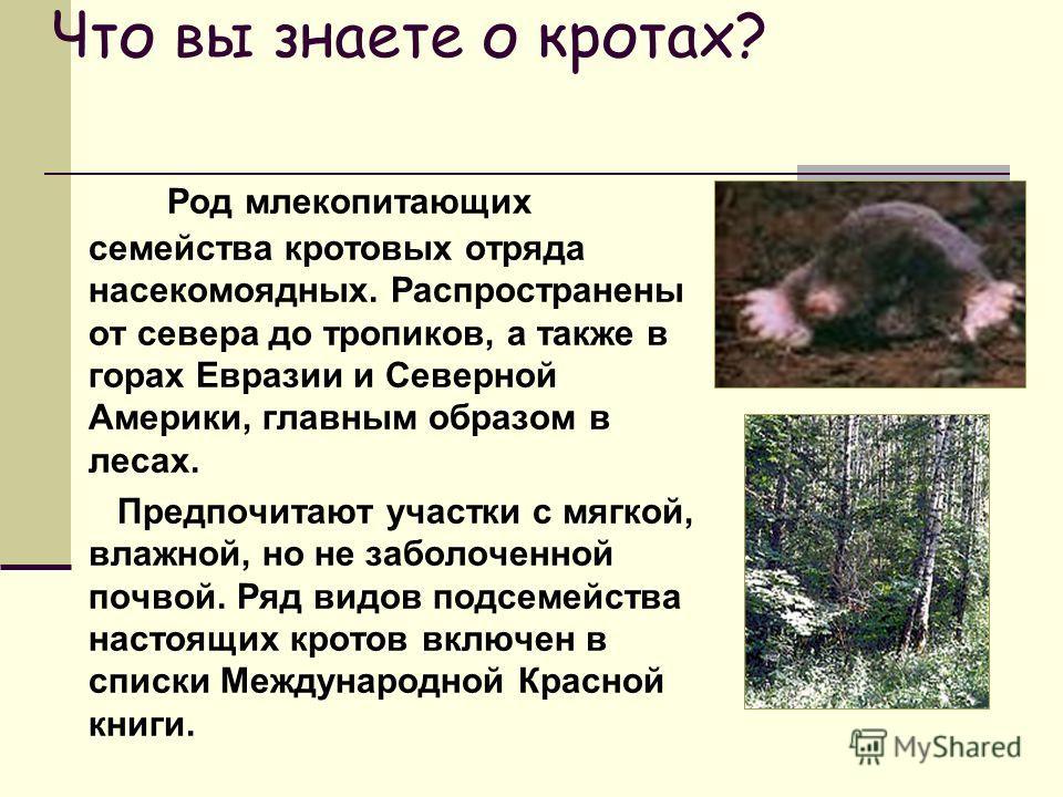 Что вы знаете о кротах? Род млекопитающих семейства кротовых отряда насекомоядных. Распространены от севера до тропиков, а также в горах Евразии и Северной Америки, главным образом в лесах. Предпочитают участки с мягкой, влажной, но не заболоченной п