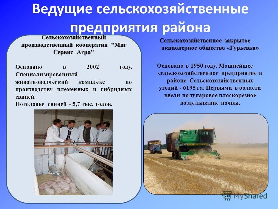 Ведущие сельскохозяйственные предприятия района Сельскохозяйственное закрытое акционерное общество «Гурьевка» Основано в 1950 году. Мощнейшее сельскохозяйственное предприятие в районе. Сельскохозяйственных угодий - 6195 га. Первыми в области ввели по