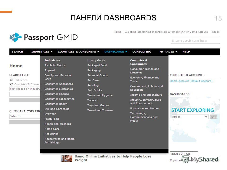© Euromonitor International 18 ПАНЕЛИ DASHBOARDS