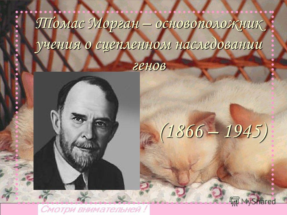 Томас Морган – основоположник учения о сцепленном наследовании генов (1866 – 1945)
