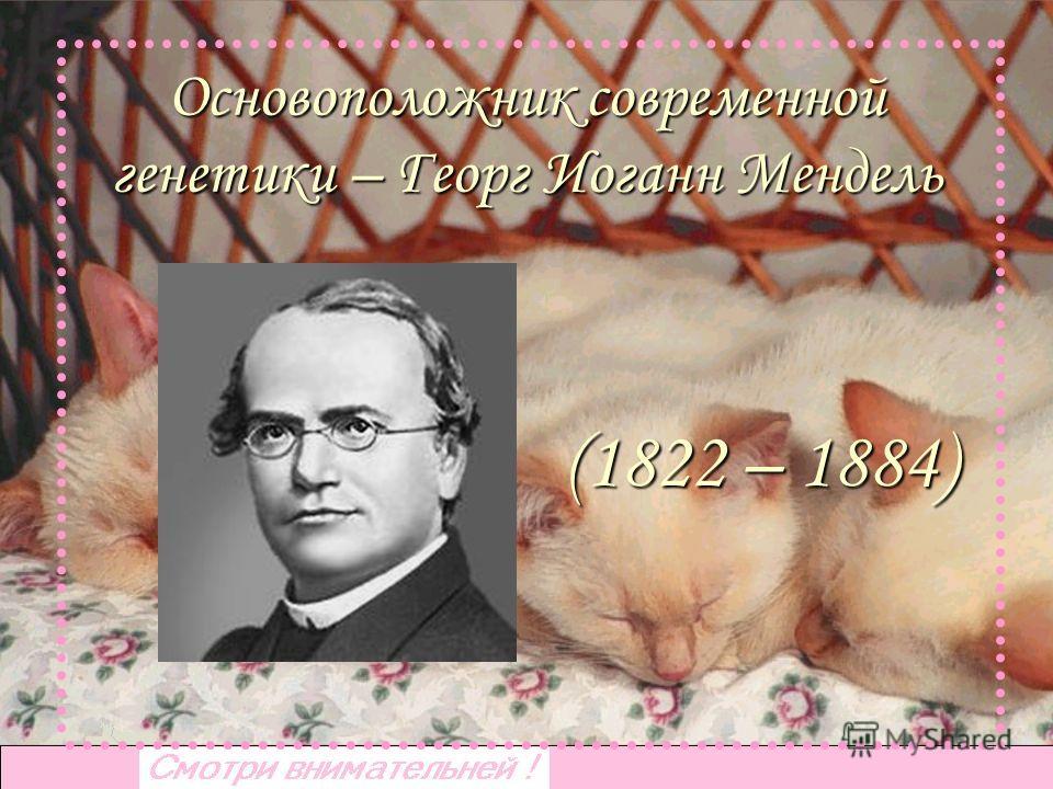 Основоположник современной генетики – Георг Иоганн Мендель (1822 – 1884)