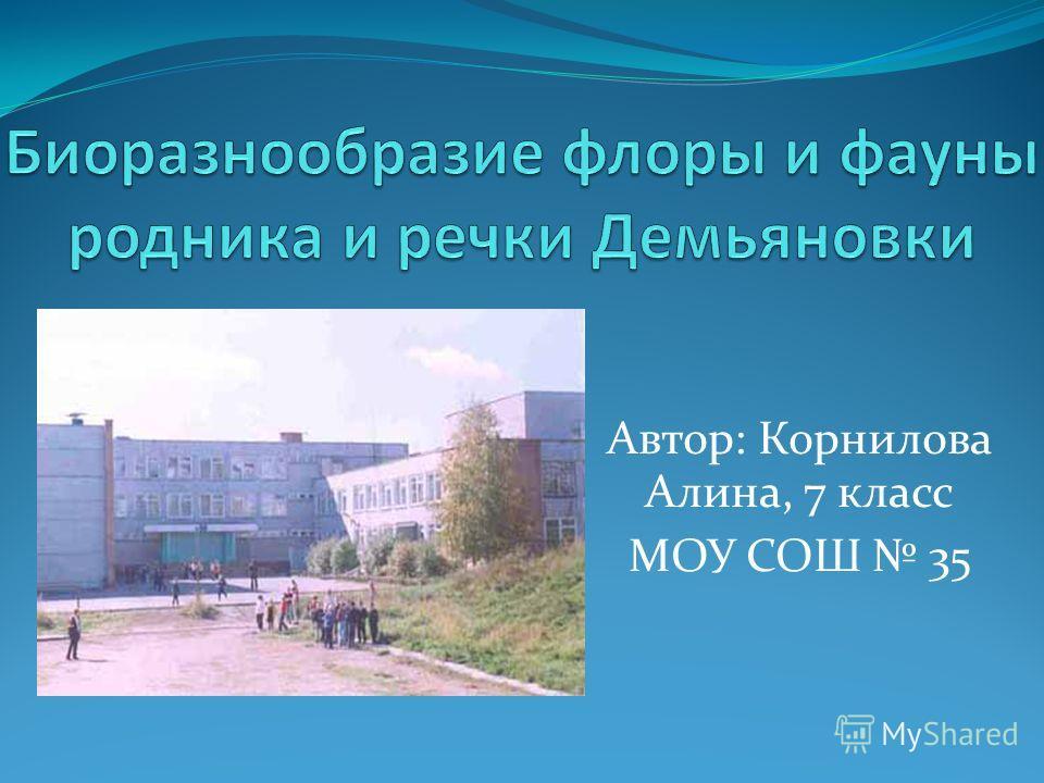 Автор: Корнилова Алина, 7 класс МОУ СОШ 35