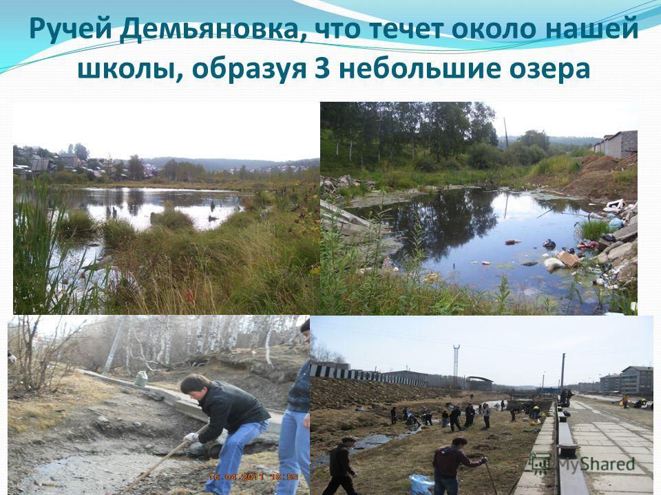 Ручей Демьяновка, что течет около нашей школы, образуя 3 небольшие озера