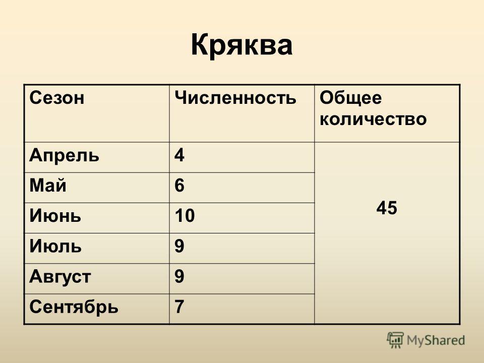 Кряква СезонЧисленностьОбщее количество Апрель4 45 Май6 Июнь10 Июль9 Август9 Сентябрь7