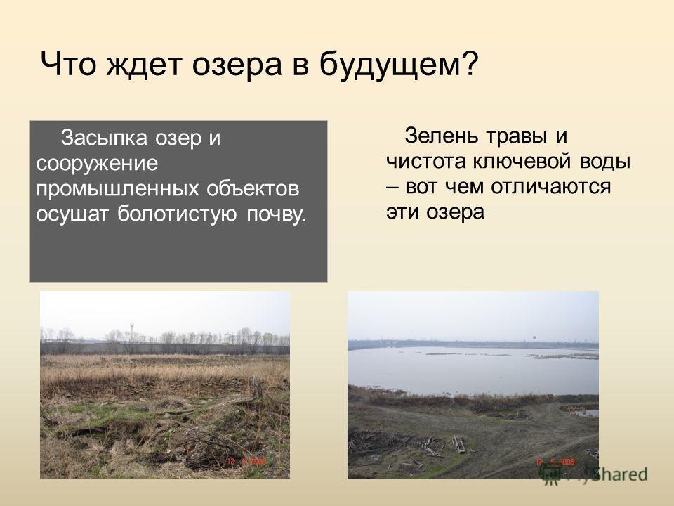 Что ждет озера в будущем? Засыпка озер и сооружение промышленных объектов осушат болотистую почву. Зелень травы и чистота ключевой воды – вот чем отличаются эти озера