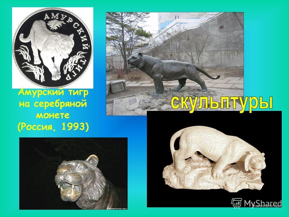 Амурский тигр на серебряной монете (Россия, 1993)