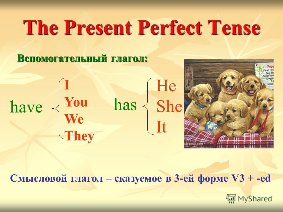 The Present Perfect Tense Вспомогательный глагол: I You We They have has He She It Смысловой глагол – сказуемое в 3-ей форме V3 + -ed