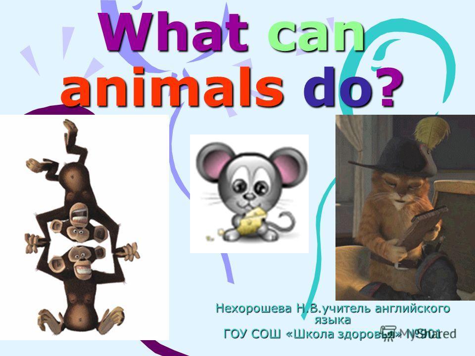 What can animals do? Нехорошева Н.В.учитель английского языка ГОУ СОШ «Школа здоровья» 901