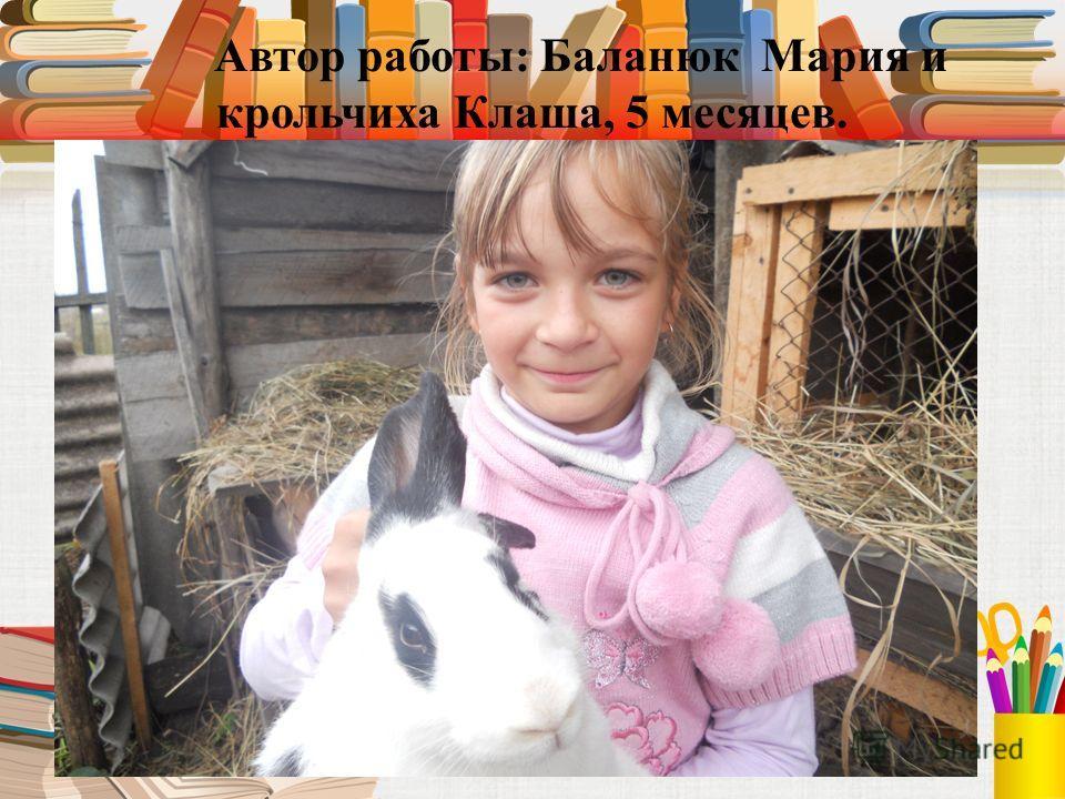Автор работы: Баланюк Мария и крольчиха Клаша, 5 месяцев.