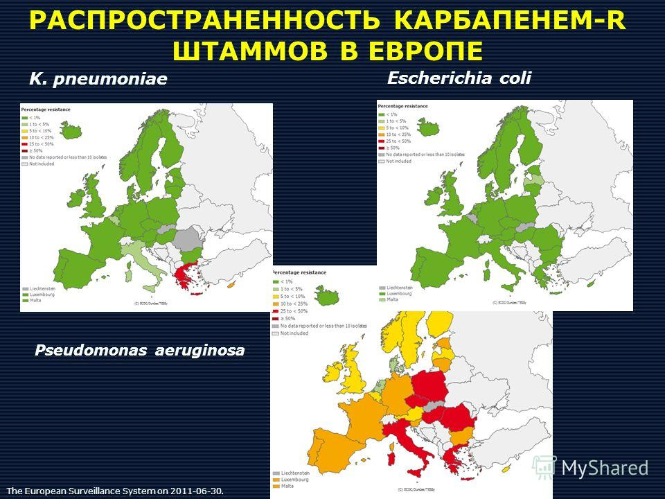 РАСПРОСТРАНЕННОСТЬ КАРБАПЕНЕМ-R ШТАММОВ В ЕВРОПЕ Escherichia coli K. pneumoniae Pseudomonas aeruginosa The European Surveillance System on 2011-06-30.