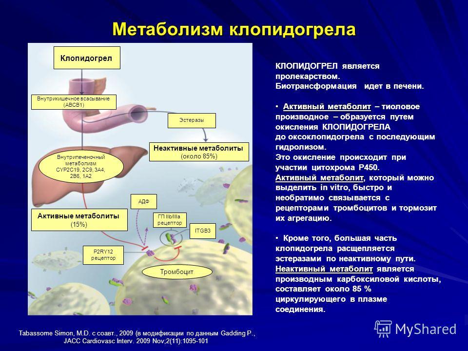 Метаболизм клопидогрела Tabassome Simon, M.D. с соавт., 2009 (в модификации по данным Gadding P., JACC Cardiovasc Interv. 2009 Nov;2(11):1095-101 Клопидогрел Внутрикишечное всасывание (АВСВ1) Эстеразы Неактивные метаболиты (около 85%) Внутрипеченочны