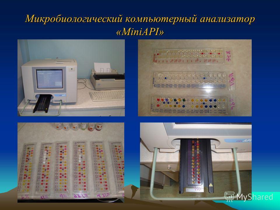 Микробиологический компьютерный анализатор «MiniAPI»