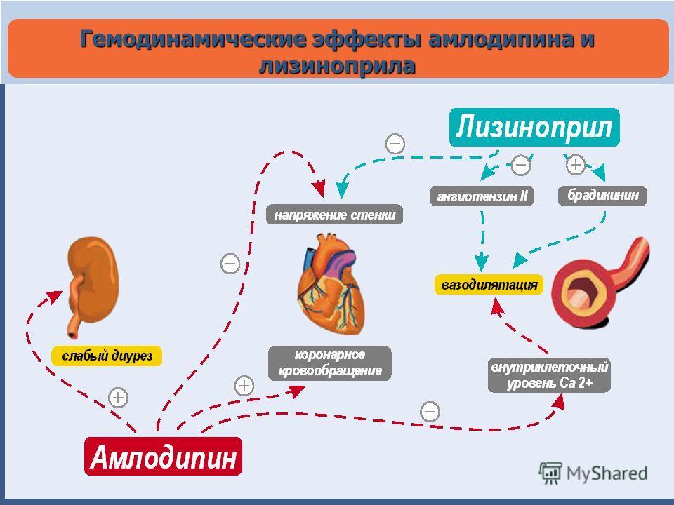Гемодинамические эффекты амлодипина и лизиноприла
