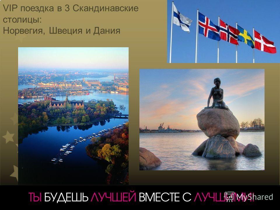 VIP поездка в 3 Скандинавские столицы: Норвегия, Швеция и Дания