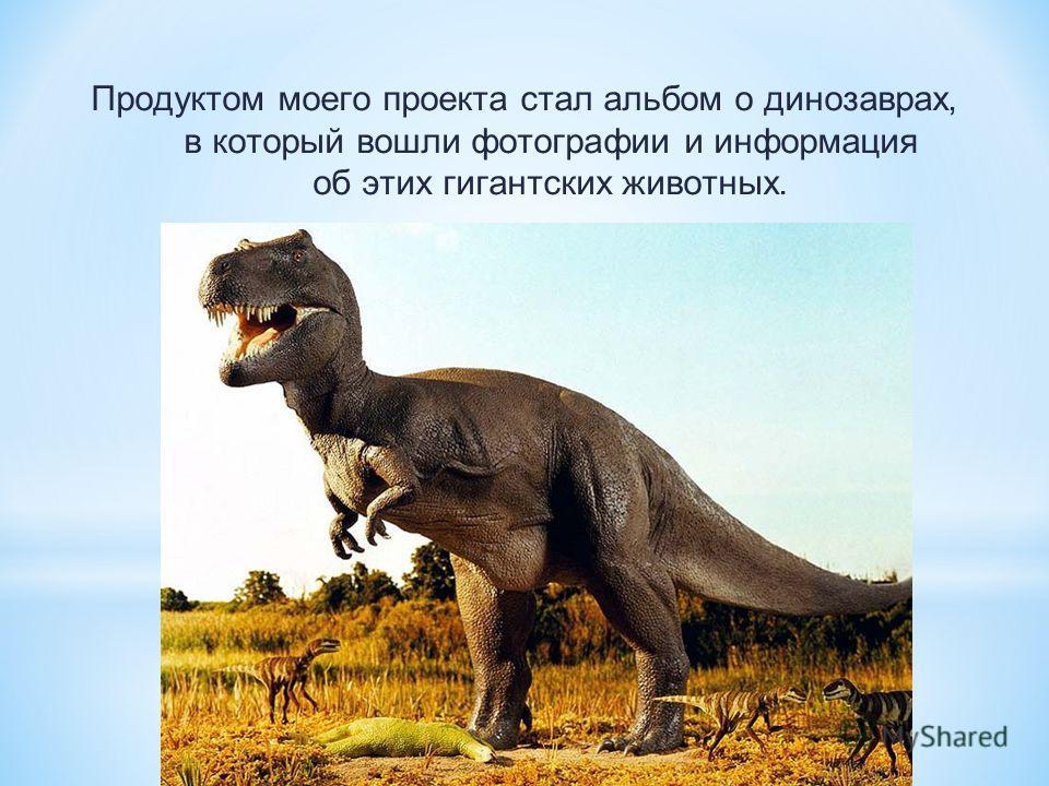 Продуктом моего проекта стал альбом о динозаврах, в который вошли фотографии и информация об этих гигантских животных.
