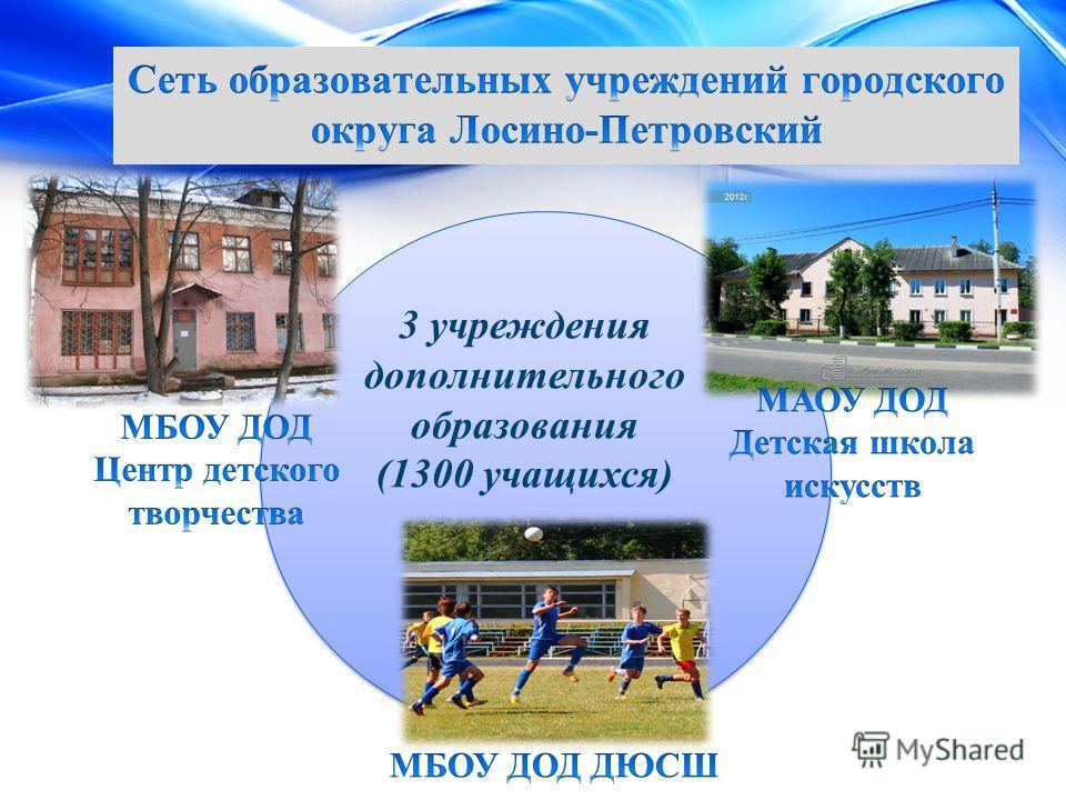 3 учреждения дополнительного образования (1300 учащихся)