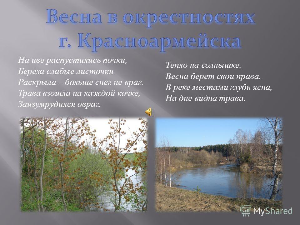Река величаво несет свои волны В широких просторах русской земли, Ее берега спокойствием полны, Годы и время ее сберегли. Спокойна, горда, бывает бурлива, В весеннем капризе она на показ. При полном разливе свободна, красива, Смотри, наслаждайся, что