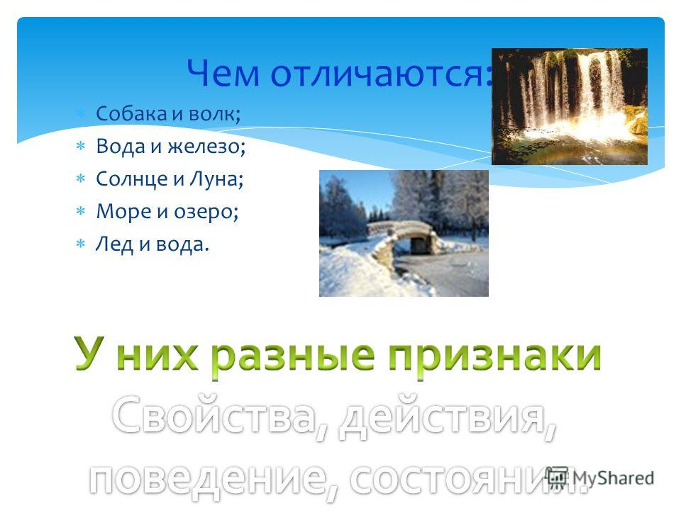 Собака и волк; Вода и железо; Солнце и Луна; Море и озеро; Лед и вода. Чем отличаются: